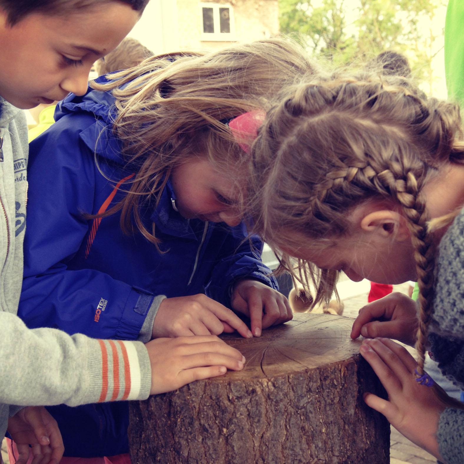 Kinderen - Tellen jaarringen - Hout - Klompen